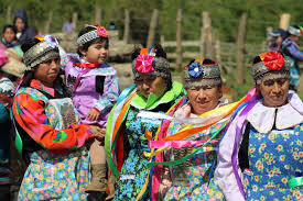 Chile's Year of Indigenous Languages